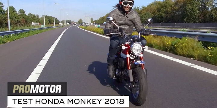 Test Honda Monkey